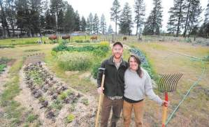 Benji Nagel and Carys Wilkins, both 25, started Mahonia Gardens in Sisters, OR.