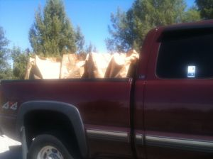 Yet another truckload of weeds ready to go to recycling center.